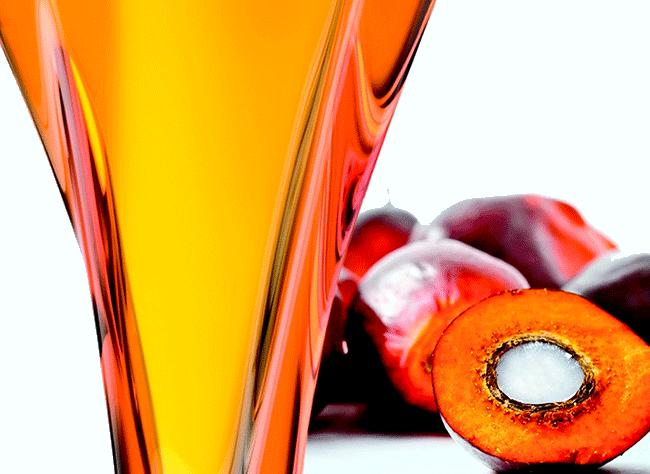 NOIX DE KOLO : L'huile secrète derrière le succès Kibonit