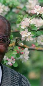 Léopold Sedar Senghor, ancien président du Sénégal, académicien et poète  pose le 11 mai 1989 dans son jardin à Verson. (FILM) AFP PHOTO MYCHELE DANIAU / AFP PHOTO / MYCHELE DANIAU